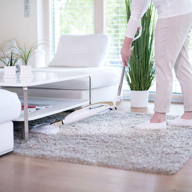 dampfreiniger mit knickgelenk f r schwer erreichbare stellen hagen grote shop. Black Bedroom Furniture Sets. Home Design Ideas