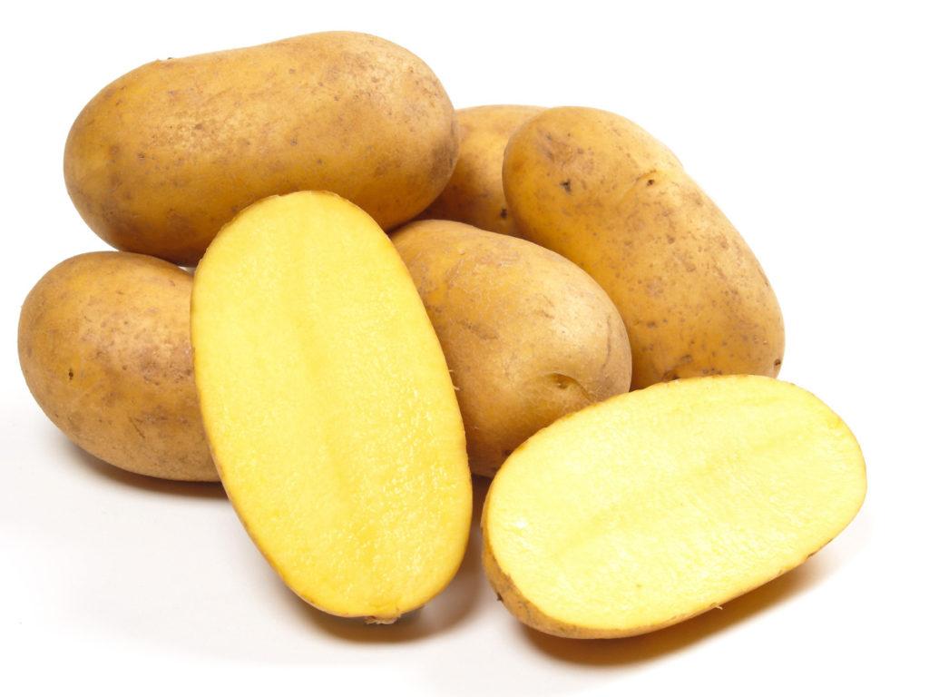 Die Kartoffel: Hansdampf in allen Töpfen   GenussMAGAZIN